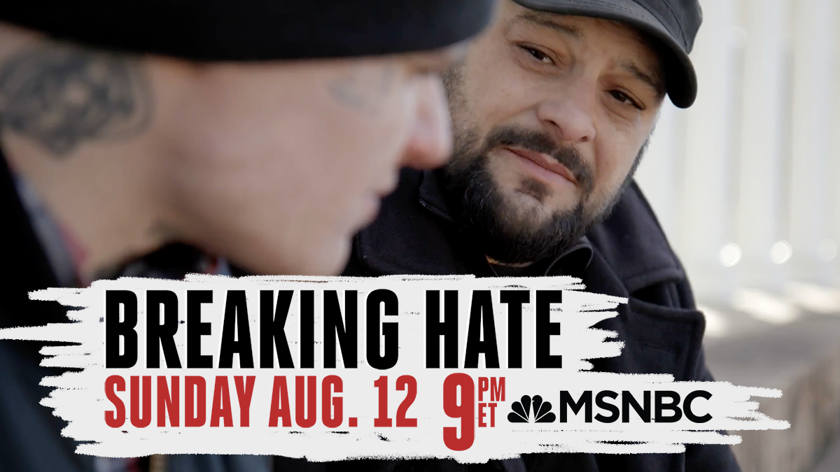 Breaking Hate Ad Banner